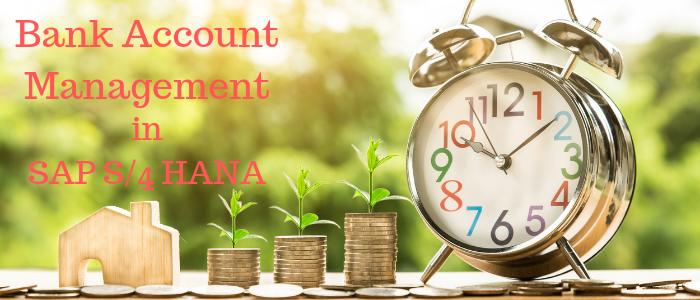 Bank Account Management in SAP S4 HANA - Skillstek